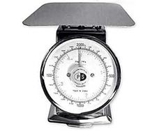 P-2 Spring Dial Scale