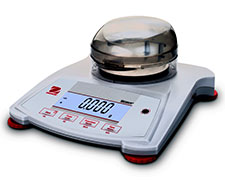 SPX Scout Portable Bench Scale